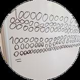 Workshop Zahlensysteme