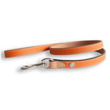 Lord Ascot Leine orange