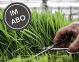 Bio Gras-Mix, frisch geschnitten im Abo