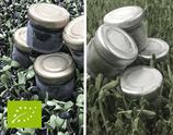 Kombipaket Bio Rohsaft aus Sprossengrün von Sonnenblume und Erbse