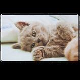 """Fussmatte von Clayre & Eef // """"Katze"""""""
