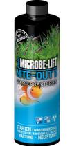 Microbelift Nite Out II