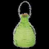 Wespenfalle Grün L