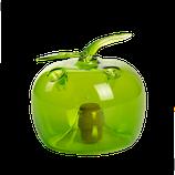 Fruchtfliegenfalle Grün M