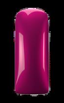 MGP Betta Pink