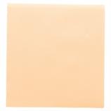 Serviette couleur voie sèche (x50)