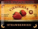 Vintage Erdbeer