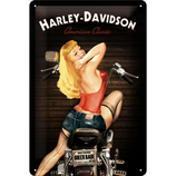 Harley Davidson Biker Babe