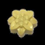 Bodymelt Vanillabean