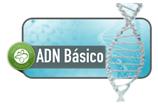 ADN Básico Instructor 12-15 Septiembre