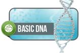 Инструкторские Базовый ДНК