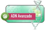 ADN Avanzado Instructor 17 - 19 Septiembre