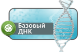 ThetaHealing Базовый ДНК Инструкторский курс -                                      С 12 по 15 сентября