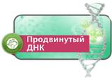 ThetaHealing Продвинутый ДНК Инструкторский курс - С 17 по 19 сентября