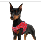 Cooling Comfy Harness Red Western