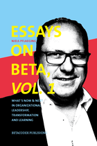 Essays on Beta, Vol. 1