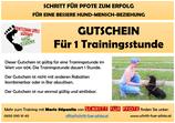 Gutschein - Trainingsstunde