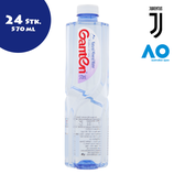 Ganten Wasser 570ml - 24 Stk.