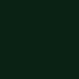 Vert bouteille (robe)
