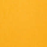Jaune moutarde (polo)