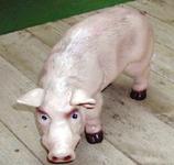 RIZD12 Schwein Figur