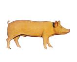 RIB27 Schwein Figur groß