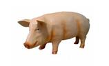 RIMC62A Schwein Figur groß
