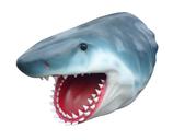 RII57 Hai Haikopf Figur lebensgroß