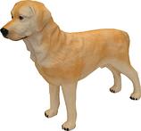 RI035A Golden Retriver Hund Figur lebensgroß