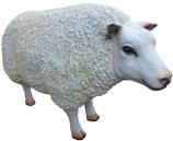 RIZD51 Schaf Figur groß steht