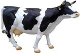 RIA124A Kuh Figur lebensgroß schwarz weiß links