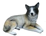 RIA491 Husky Hund Figur lebensgroß liegt