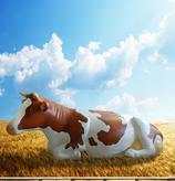 RIA2504 Kuh Figur lebensgroß liegend