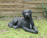 90033 Labrador Hund Figur lebensgroß liegt