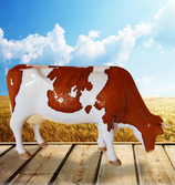 RIA2503 Kuh Figur lebensgroß fressend