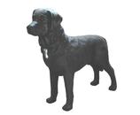 RI035 Labrador Hund Figur lebensgroß steht