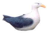 RIB106 Möwe Figur