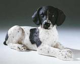 RIF344PN Pointer Welpe Hund Figur