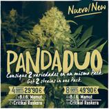 PANDA DUO nº1