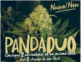 PANDA DUO nº3