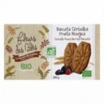 12 Biscuit petit dej BIO pépites chocolat paquet 205g