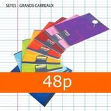 1 CAHIER CALLIGRAPHE 17X22 48P GRANDS CARREAUX SÉYÈS 90G