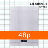 1 CAHIER POLYPRO INCOLORE CALLIGRAPHE A4 21X29,7CM GRANDS CARREAUX SÉYÈS 90G