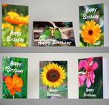 Geburtstagskartenset Happy Birthday  (5 Klappkarten mit 5 Kuverts und 1 Postkarte (Sonnenblume) mit 1 Kuvert)  SHP1