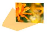 """Postkarte mit Zitat """"Hoffnung schenken"""" mit Kuvert Bp0011"""
