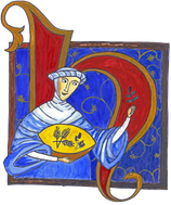 Hildegard v. Bingen Bertrampulver   50g
