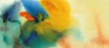 ArteVerde Petitgrain Citron Combava BIO   5ml