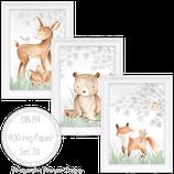 Kinderzimmer Babyzimmer Bilder Set 36 Süße Waldtiere