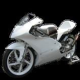 RS125 レースカウル