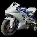 YZF-R1 00-01 レースカウル